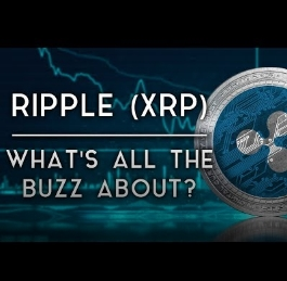 Ripple XRP XRapid Explained | What is It Used For | DataDash