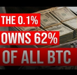 Who Owns The Most Bitcoin | 0.1% OWN 62% Of All BITCOIN