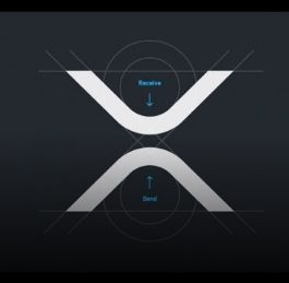 XRapid Activated? XRP Bull Run   What Caused It