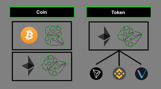 Coin-vs-Token-Blockchain-Terms-Explained
