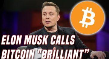 Elon Musk, Bitcoin, Crypto | Blockchain News