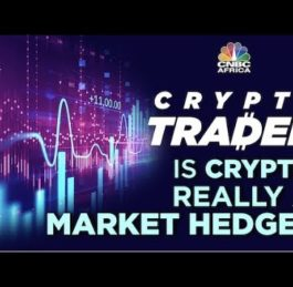 Is Bitcoin and Crypto REALLY a Hedge?