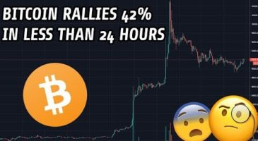 Bitcoin Rises 42% In Less Than 24 Hours | One of the Highest Jumps Ever