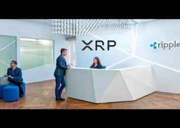 Prepare For the Flood, XRP ODL Transactions And Ripple Net Map