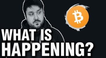 What is Happening to Bitcoin Right now | Crypto Daily