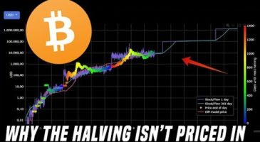 Why The Bitcoin Halving Isn't Priced In | DataDash