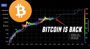 Bitcoin Is Back | Why It's Time To Start Paying Attention | DataDash