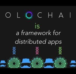 Holochain Explained by Holochain Developer