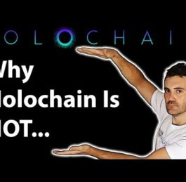 Holochain Review HOT | Coin Bureau