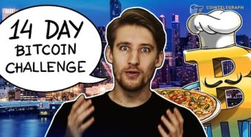 Living Day to Day with Bitcoin   Cointelegraph