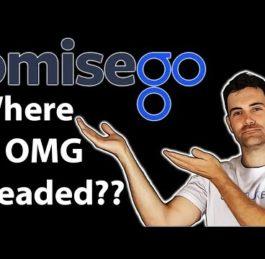 OmiseGO (OMG) | Still Worth It in 2020?