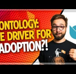 Ontology ONT Review by Ethereum Developer