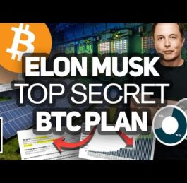 Tesla's Elon Musk Bitcoin and Cryptocurrency