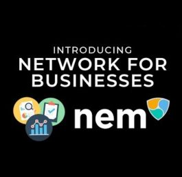 The Story of NEM (XEM) Video