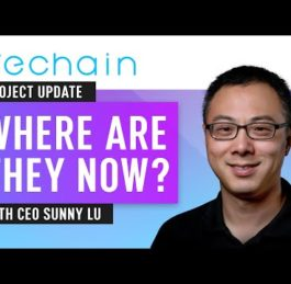 Vechain 2020 Update   CEO Sunny Lu Interview   Nuggets News