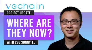 Vechain 2020 Update | CEO Sunny Lu Interview | Nuggets News