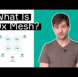 What is 0x Mesh? Explained