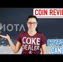 What is IOTA | The Machine Economy | CryptoCandor