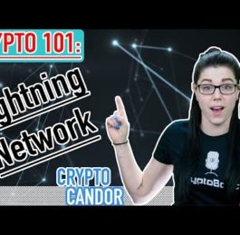 What is Lightning Network | CryptoCandor