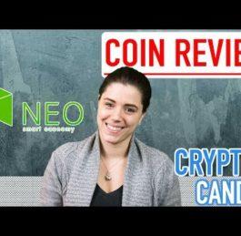 What is Neo | CryptoCandor