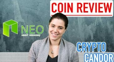 What is Neo | CryptoCandor