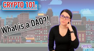 What is a DAO | Distributed Autonomous Organization | CryptoCandor