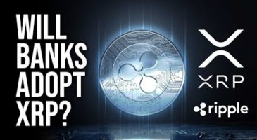 Will Banks Use Ripple's XRP Token | QA | Nuggets News