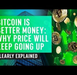 Bitcoin Is Better Money | Why Price Keeps Going Up | Nuggets News