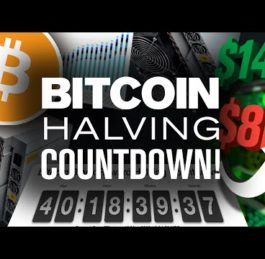 BITCOIN Halving 2020 Price Prediction | Will BTC Jump?