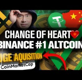 Binance BNB and CoinMarketCap Buyout | Top Altcoin