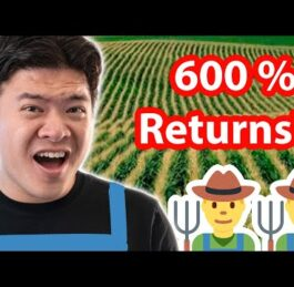 Best yield farming optimizer to use for the most gains (YFO)