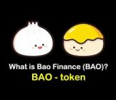 BAO Finance Video – Investment Theory