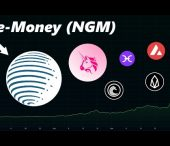 DataDash Deep Dives into E-Money (NGM) | Fast Frictionless Payments