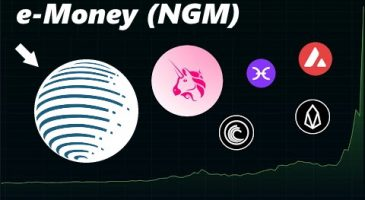 DataDash Deep Dives into E-Money (NGM)   Fast Frictionless Payments
